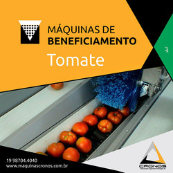 Maquina de Beneficiamento de tomates
