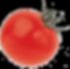 Beneficiamento de tomates.png