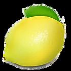 Beneficiamento_de_limão.png