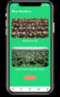 Kiwi App Academy.png