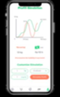 Kiwi App Profit Simulation.png