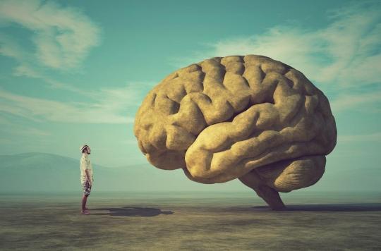 cerveau, structure, hémisphère, carte