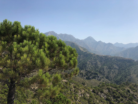 Sierra Almijara #La Axarquía #Andalusië