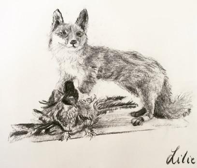 A fox and pheasant