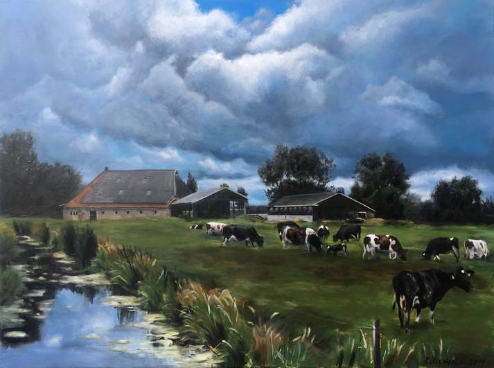 Farm in Tytsjerk