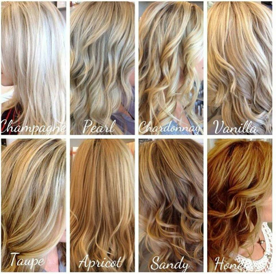 Blonde chart aveda hair salon palm harbor