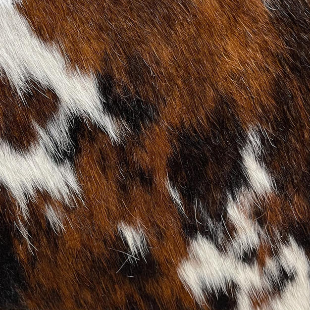 Hair on Brindle Brown and White