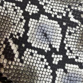 Cobra Black and White