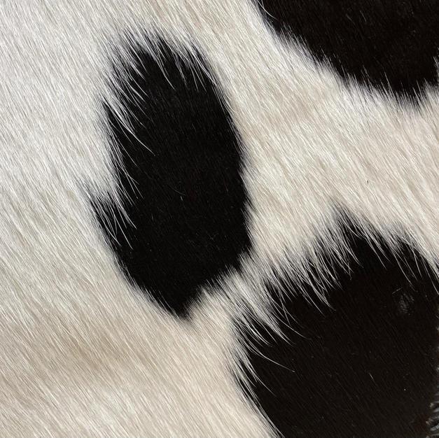 Hair on Black and White (calf)