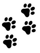 PawPanions White Background Paw Prints.P