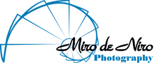 MdN Logo - transparent.png