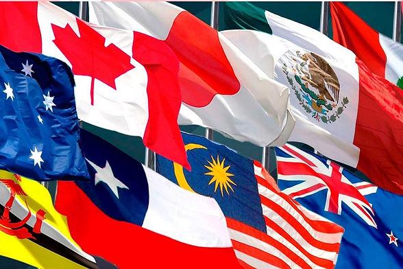 apec-banderas.jpg