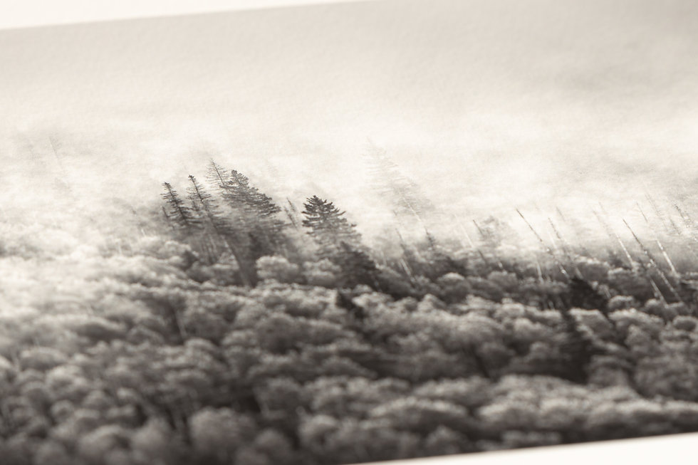 Close up photo of the paper texture on a fine art photography print