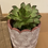 Thumbnail: Arc Round Planter (plant not included)