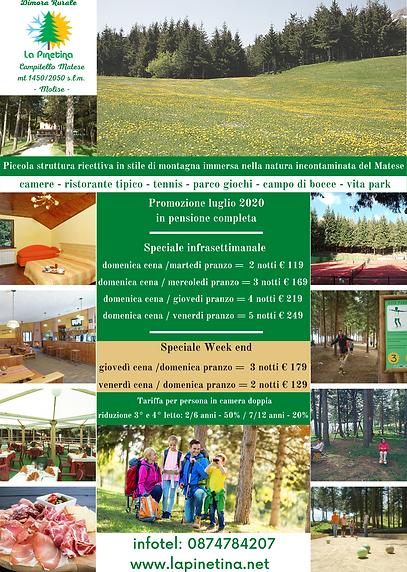 pinetina estate 2020.png
