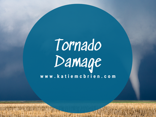 Tornado damage!