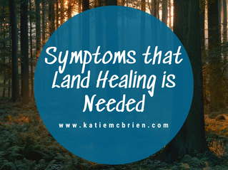 Symptoms that Land Healing is Needed