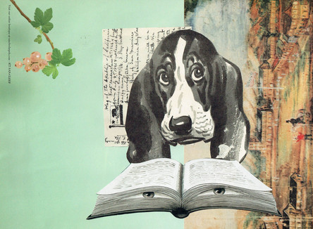 The Reading Hound, 2020