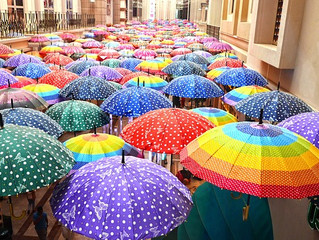 Personal Umbrella Insurance Policy: Why do I need it?