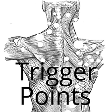 15738366084431-Trigger-Points-Course-Ima
