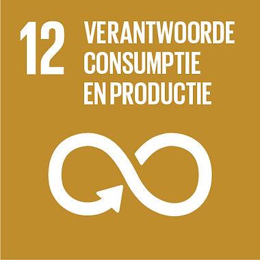 SDG-icon-NL-RGB-12.jpg
