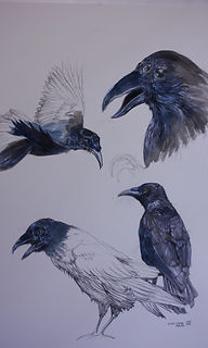 William Simpson-Three-Eyed-Raven-723x102