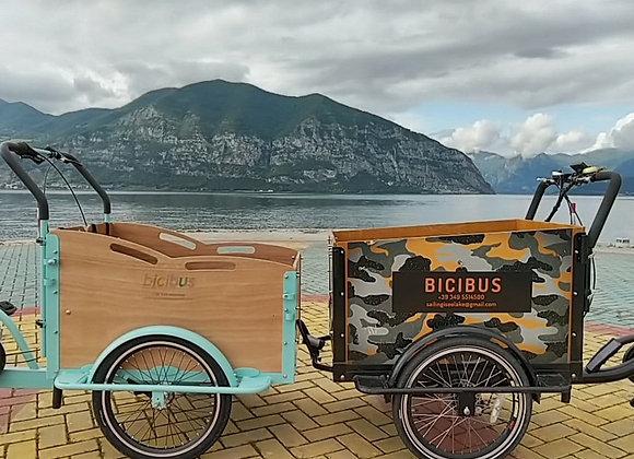 Panda Bike con pedalata muscolare (non elettrica) prezzo iva inclusa già montata