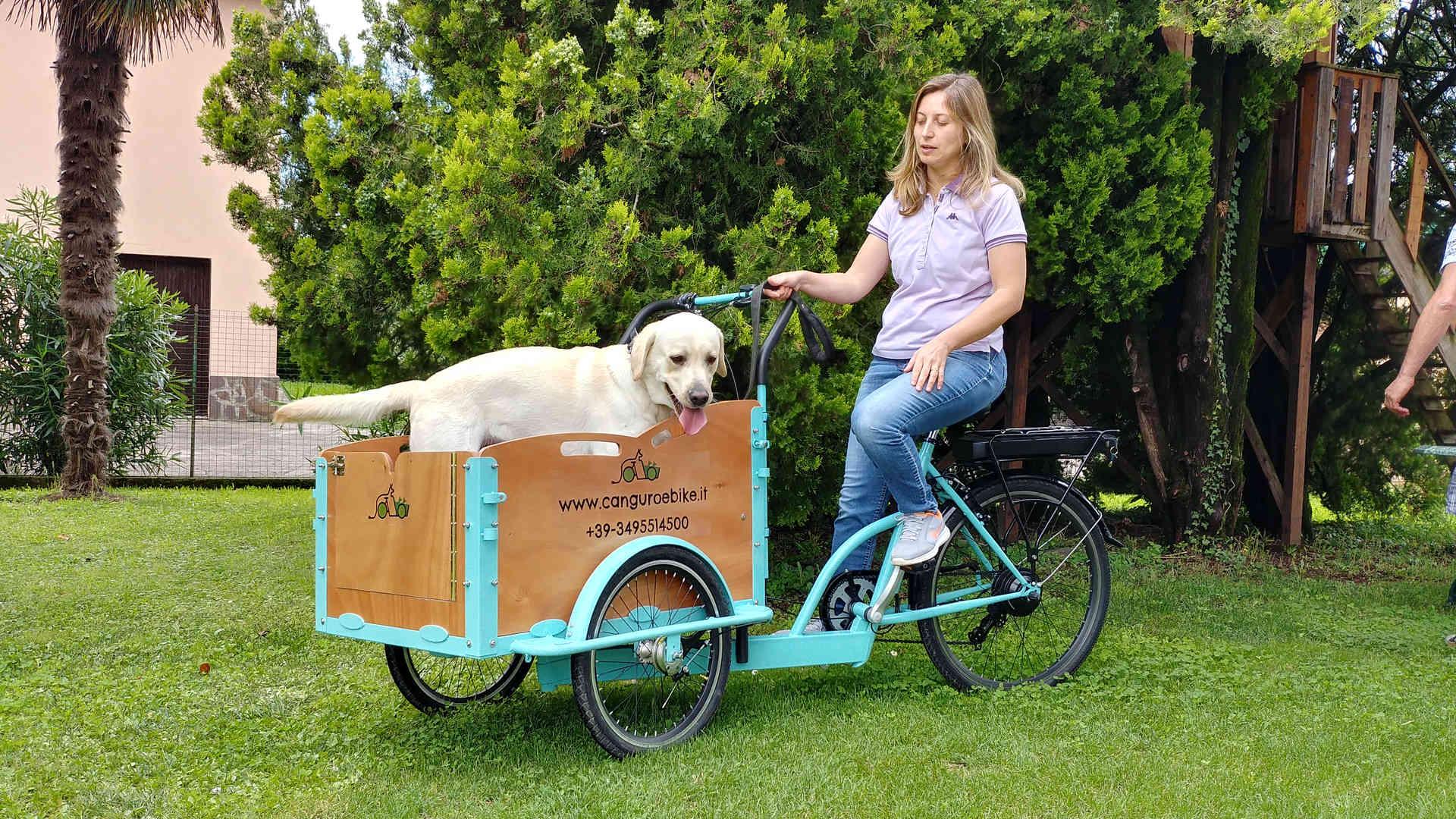 trasporta i tuoi animali domestici!