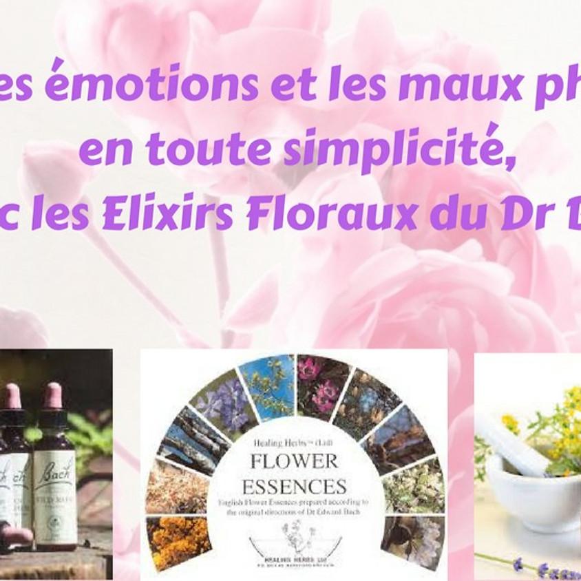 """Formation """"Les Essentielles"""" Fleurs de Bach 25 et 26 Janvier 2021"""