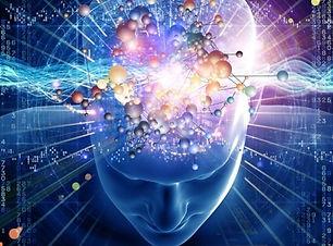 MDP: Cerveau mode d'emploi