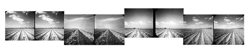 """Karen Hillier, """"Furrows; Mudville, TX,"""" 2020, composite photograph of stereo pinhole photos; archival pigment print."""