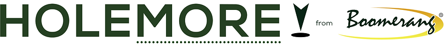 HOLEMORE-logo.png
