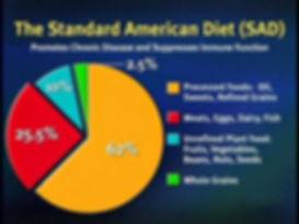 StandardAmericanDietChart-2.jpg