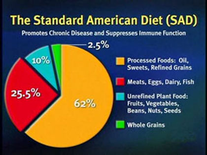 StandardAmericanDietChart-2.jpg