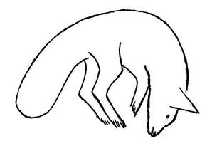 82   Fox pouncing.jpg