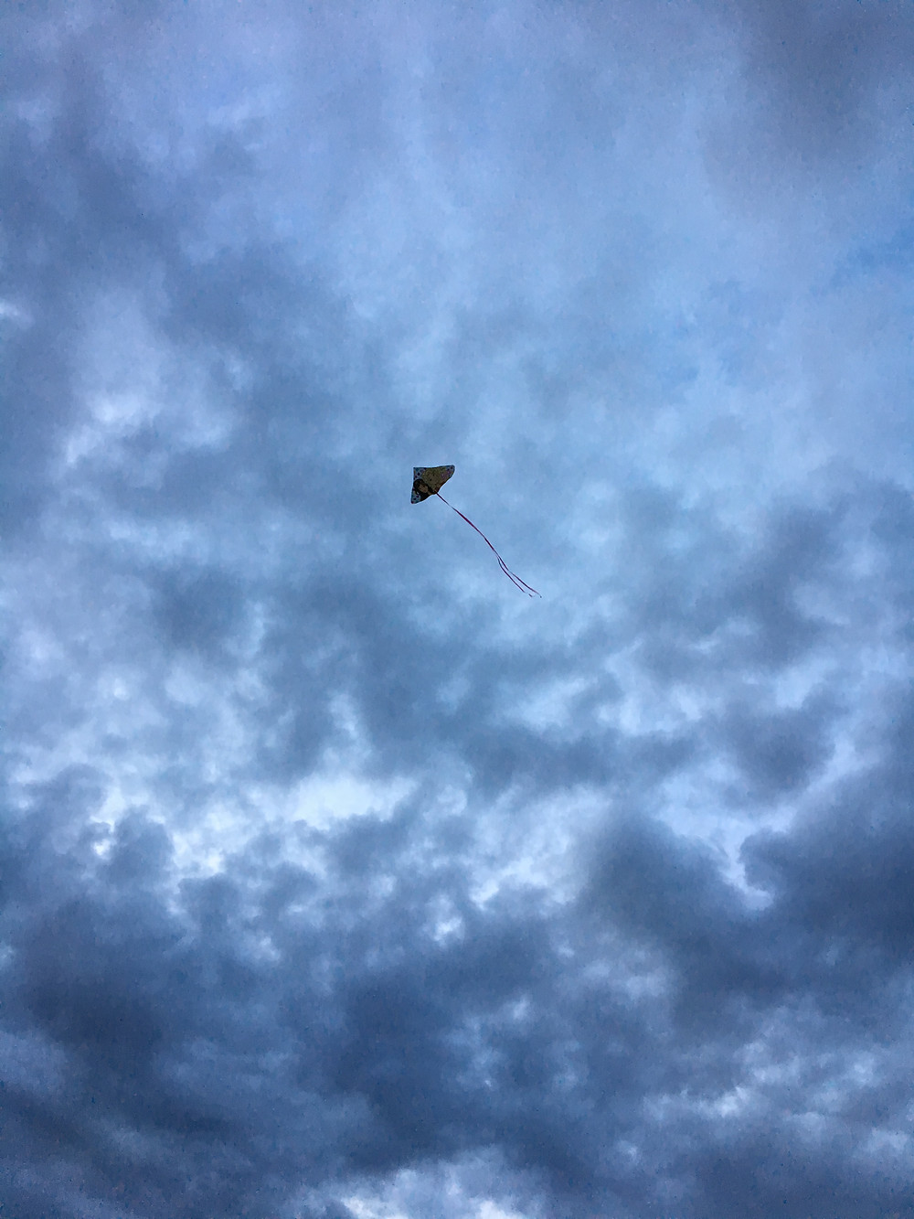 Sometimes You Gotta Be The Lone Kite Flying High
