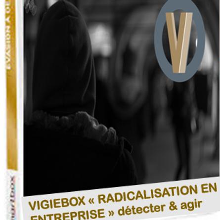 Compréhension, détection, prévention du risque de radicalisation