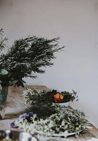 Herbes et Plantes