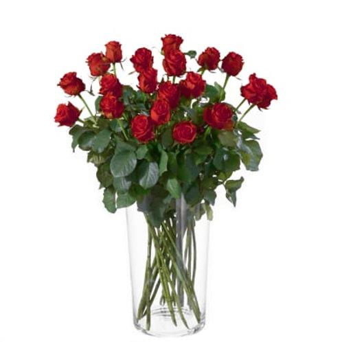 Rote Rosen (Anzahl wählbar)