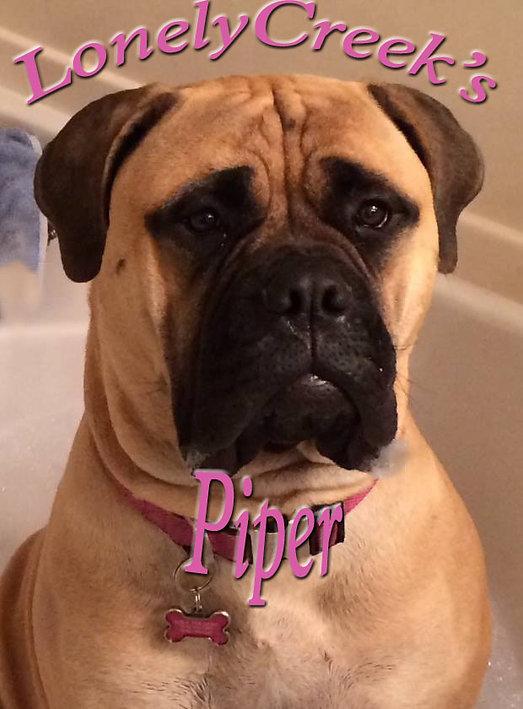 PiperHeadShot.jpg