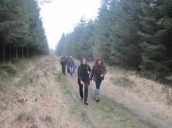 Promenades (1)