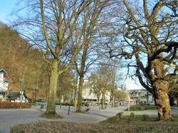 Parc et galerie Fabi (7)