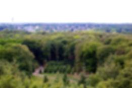 Uitzicht Belvedere Park Sonsbeek