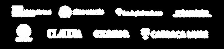 Logotipos de veículos de comunicação, da esquerda para direita: TedX Dante Alighieri School, Hospital Sírio Libanês, Fundação Bradesco, Web Para Todos, Record TV, Revista Claudia, Revista Exame, Catraca Livre
