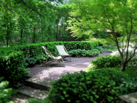 Create a Beautiful Secluded Outdoor Space
