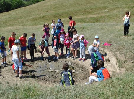 Despre reconectarea copiilor cu natura