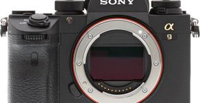 L'aggiornamento del firmware Sony a9 aggiunge l'Animal Eye AF, l'interval shooting e alt