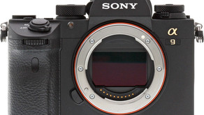 L'aggiornamento del firmware Sony a9 aggiunge l'Animal Eye AF, l'interval shooting e alt