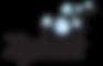 Zylast Logo.png