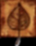 collins_real_estate_logo.png